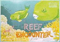 Brettspiele bei AEIOU.DE - Abbildung: Frontcover der Spielbox von Reef Encounter